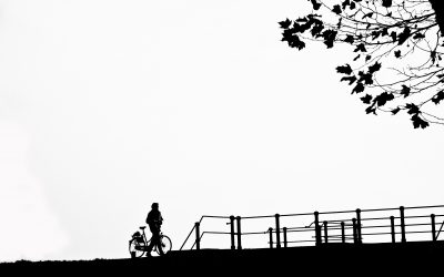 Winnaar Reinerie Garantiemakelaars Fotowedstrijd Nieuwegein 2009
